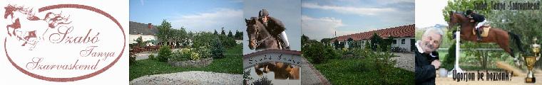 Böllérverseny a Szabó-tanyán